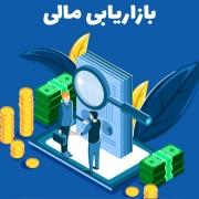 بازاریابی مالی موسسات خدمات مالی